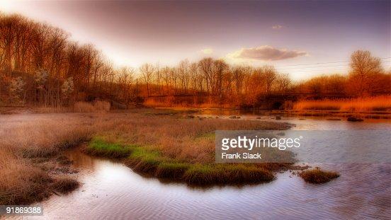 Salt marsh in the sunset