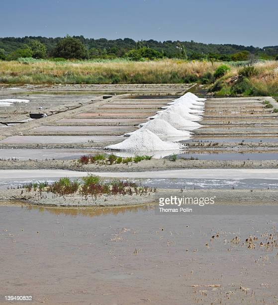 Salt near Guerande, Pradel, France