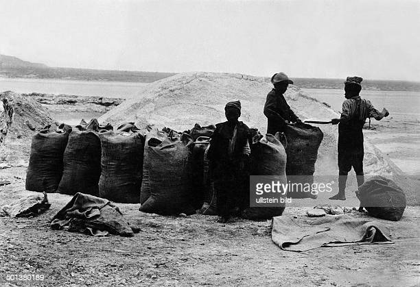 filling salt into sacks undated