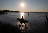 A salt water cowboy waits for wild ponies to swim across the Assateague Island channel to Chincoteague Island on July 25 2012 in Chincoteague...