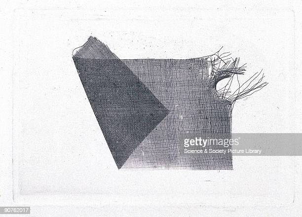 Salted paper print from a calotype negative by William Henry Fox Talbot Talbot invented the negative/positive process for producing photographs...