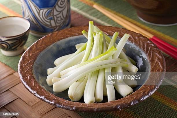 Salted Shima-rakkyo