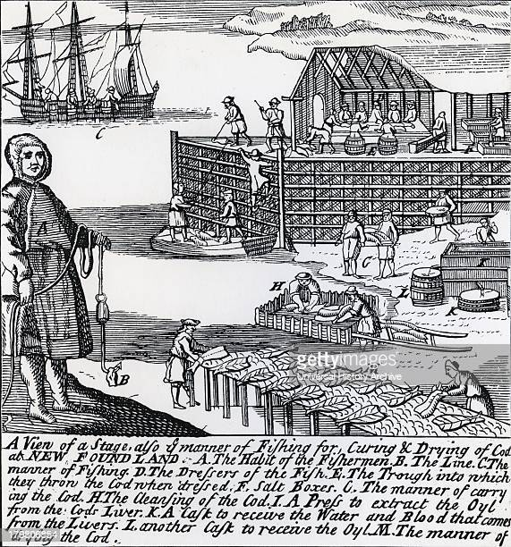 Salting and drying Cod and at K a press to extract cod liver oil Newfoundland Engraving 1738