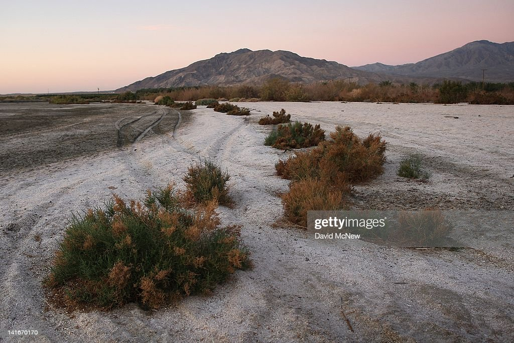 Salt-resistant plants grow in sand made up of small fish bones on the shore of the Salton Sea before sunrise in an area where a controversial development would create a new town for nearly 40,000 people on the northwest shore of the biggest lake in California, the Salton Sea, on March 21, 2012 south of Mecca, California. The Center for Biological Diversity and the Sierra Club have filed a lawsuit against Riverside County after the Board of Supervisors approved a record-sized development project for Riverside County, saying that it would increase pollution and threaten wildlife in nearby parks at the Salton Sea and in the largest state park in California, Anza-Borrego Desert State Park. Though massive fish die-offs occur annually, drawings in the Travertine Point plans feature peaceful marinas but the lake has been plagued by dropping water levels and increasing salt levels for decades. Scientists say that a catastrophic decline in the fish population is inevitable and a resulting 25 to 50 percent drop in the migratory bird population will destroy a major stopping point in the Pacific bird migration route. The shrinking salt lake is exposing more and more fine dust, posing health problem as blows it across the region. Funding to stop the ecological collapse of the sea is not likely in the near futures with its $9 billion price tag.