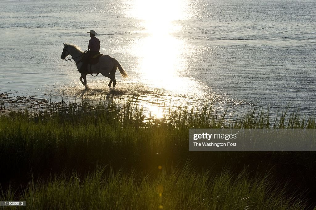 Saltwater Cowboy Tyler Marks of waits for ponies to cross the channel prior to the Chincoteague pony swim Marks has been participating for 3 years...