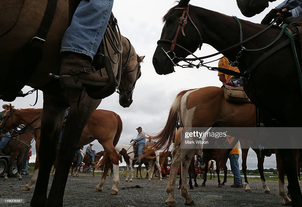 Saltwater cowboys prepare to round up wild ponies and heard them to a holding pen before making next weeks annual swim across the Assateague Channel...