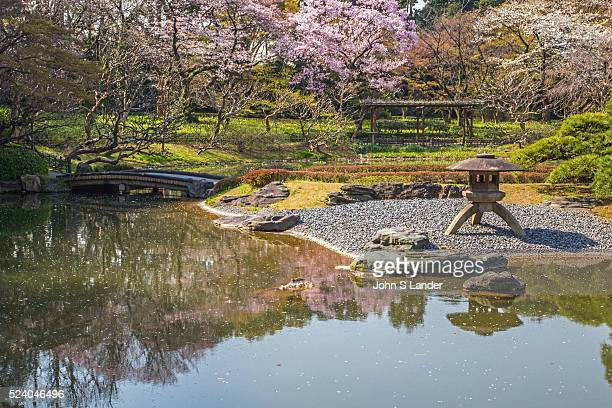 Salura Cherry Blossoms at Imperial Palace East Gardens made up of the Honmaru and Ninomaru areas of Edo Castle None of the Edo Castle buildings...
