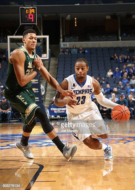 Sam Craft of the Memphis Tigers drives with the ball against Angel Nunez of the USF Bulls on January 16 2016 at FedExForum in Memphis Memphis...