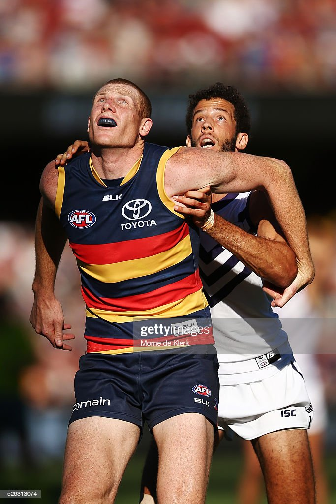 Sam Jacobs of the Crows competes for the ball with Zac Clarke of the Dockers during the round six AFL match between the Adelaide Crows and the Fremantle Dockers at Adelaide Oval on April 30, 2016 in Adelaide, Australia.