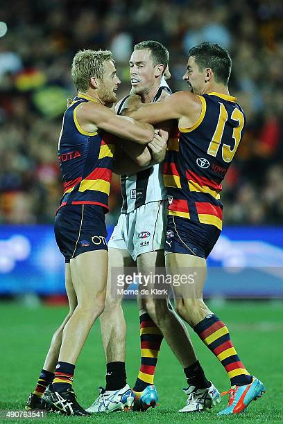 Sam Kerridge and Taylor Walker wrestle with Nick Maxwell of the Magpies during the round nine AFL match between the Adelaide Crows and the...