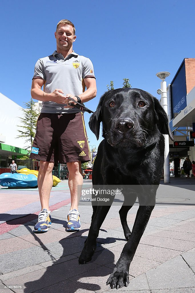 Sam Mitchell walks a Guide Dog during the Guide Dogs Tasmania 'Take the Lead' campaign launch during the Hawthorn Hawks AFL Community Camp on February 22, 2014 in Launceston, Australia.