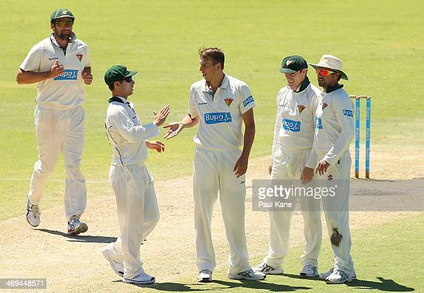 Sam Rainbird of the Tigers celebrates the wicket of Marcus North of the Warriors during day four of the Sheffield Shield match between the Western...