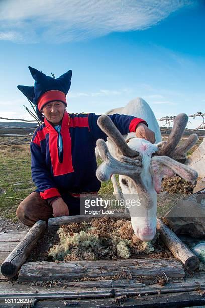 Sami native Nils with reindeer