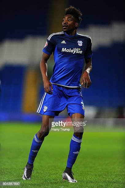 Sammy Ameobi of Cardiff City during The Emirates FA Cup Third Round match between Cardiff City and Shrewsbury Town at the Cardiff City Stadium on...
