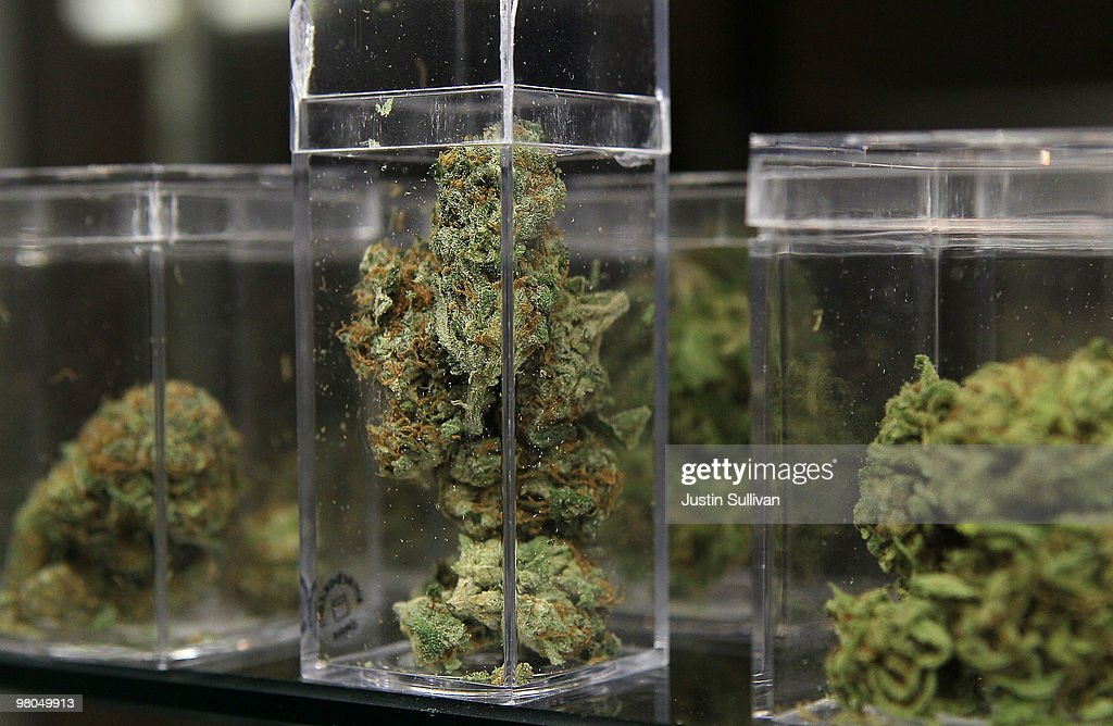 Samples of medicinal marijuana are displayed at the Berkeley Patients Group March 25, 2010 in Berkeley, California. California Secretary of State Debra Bowen certified a ballot initiative late Wednesday to legalize the possession and sale of marijuana in the State of California after proponents of the measure submitted over 690,000 signatures. The measure will appear on the November 2 general election ballot.