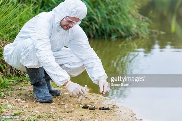 ADN de la obtención de muestras de heces de animal