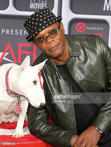 Samuel L Jackson attends the AFI Night At The Movies presented by Target held at ArcLight Hollywood on April 24 2013 in Hollywood California