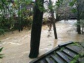 San Anselmo Creek San Anselmo California during Dec 10 winter storm 2014