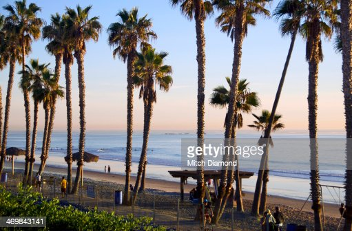 San Clemente  beach and palms