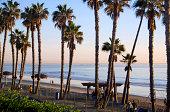San Clemente  beach and palms