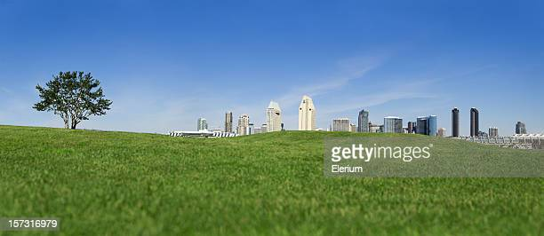 San Diego City From The Grass