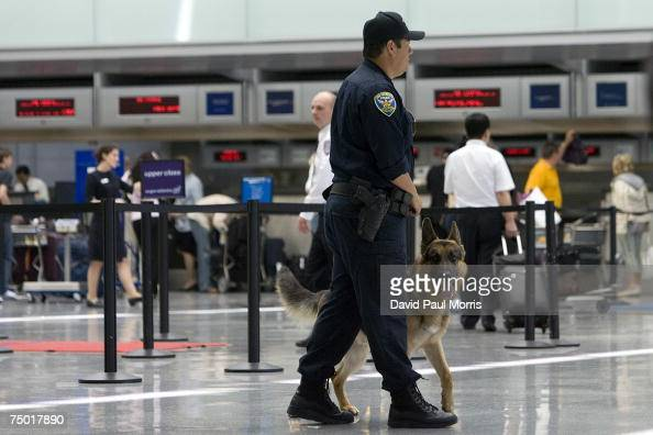 San Francisco police officer Carlos Cordova and his dog Fax patrol the ticketing area of the International Terminal at the San Francisco...