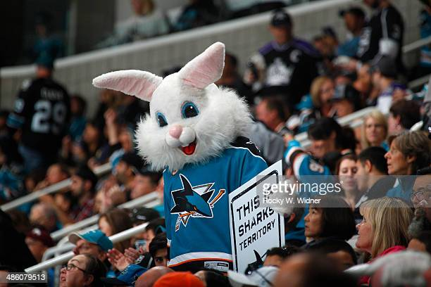 San Jose Sharks fan dressed as a bunny for Easter holds up a sign cheering on his team against the Los Angeles Kings in Game Two of the First Round...