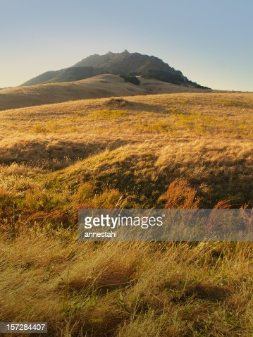 San Luis Obispo Rolling Hills with Tall Grass