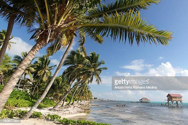 San Pedro de Belize