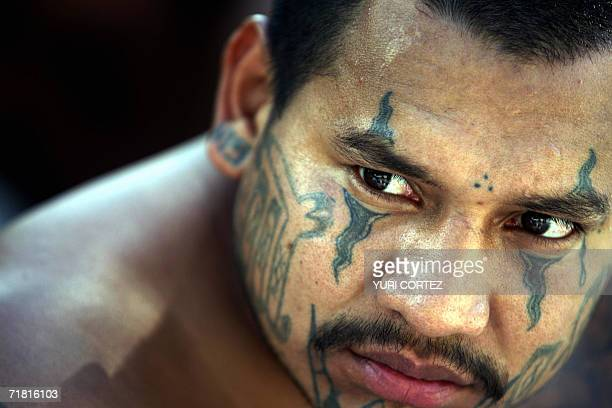 A member of the 'Mara Salvatrucha' gang is presented to the press in San Salvador on September 7th after his arrest last night Some 130 gang members...