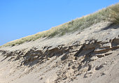 A striking example of a coastal sand dune which has been damaged by erosion.