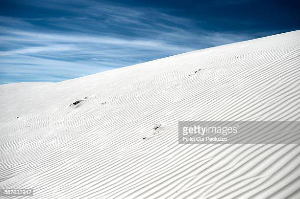 White sands National Monument New Mexico State USA