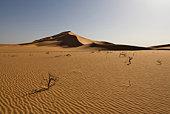 Sand Dune - Sahara Libya
