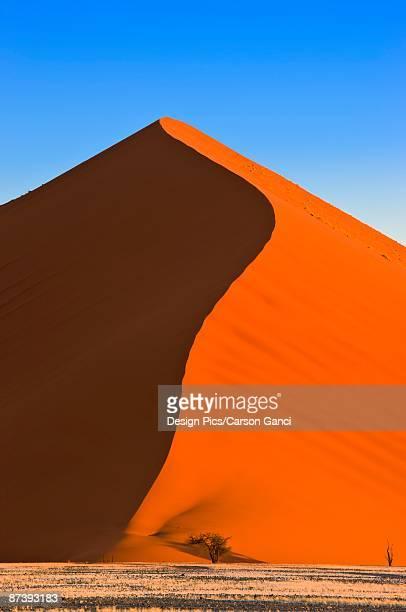 Sand dune, Sossuvlei, Namib Desert, Namibia, Africa