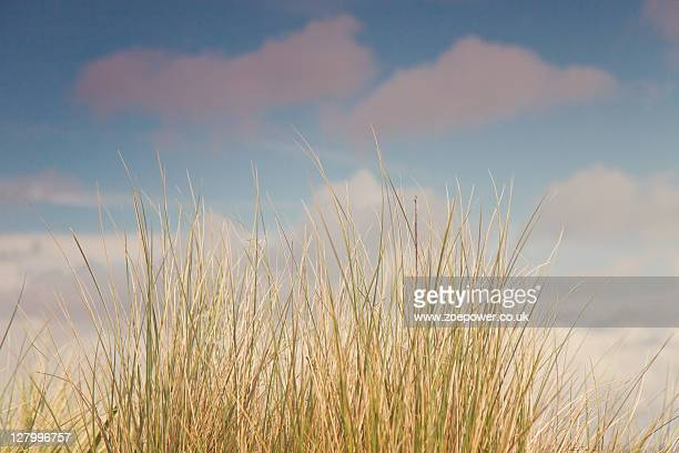 Sand dunes against pale blue sky and fluffy clouds