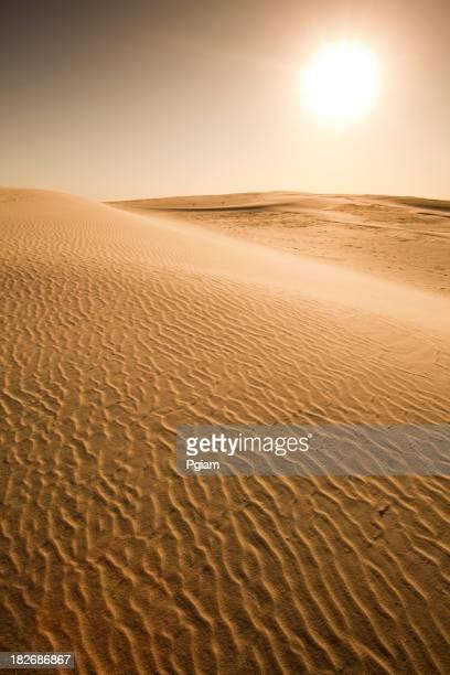 Sand dunes au coucher du soleil.
