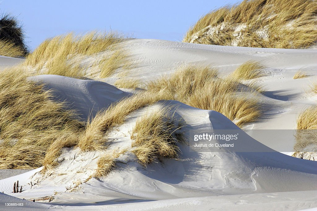 Sand dunes at the german island Helgoland in winter - Helgoland, Schleswig-Holstein, Germany, Europe : Stock Photo
