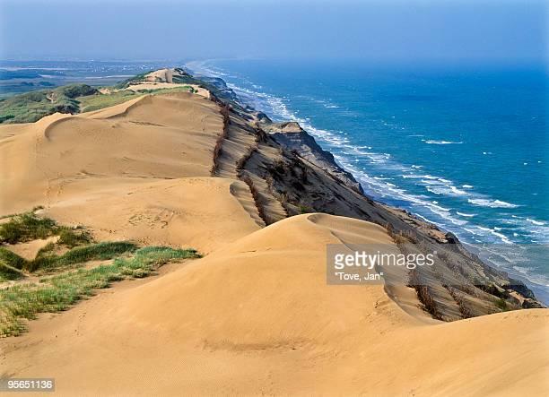 Sand dunes by the sea, Denmark.