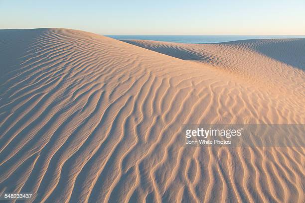 Sand dunes. Eyre Peninsula. South Australia.