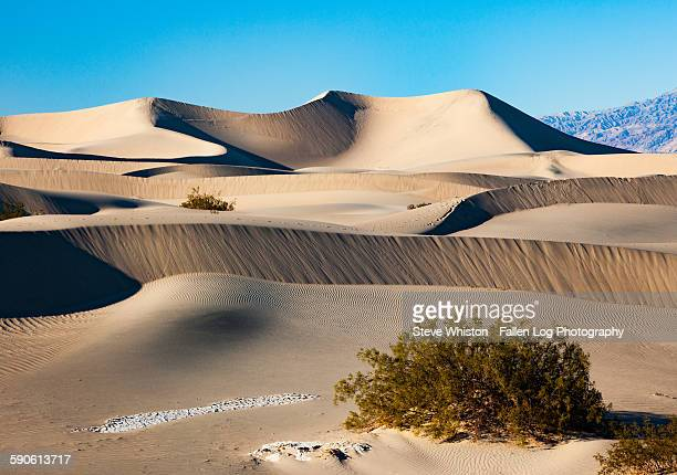 Sand Dunes in Death Valley Mesquite Flats