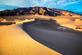 Sand dunes in desert at sunrise, Death Valley National Park.