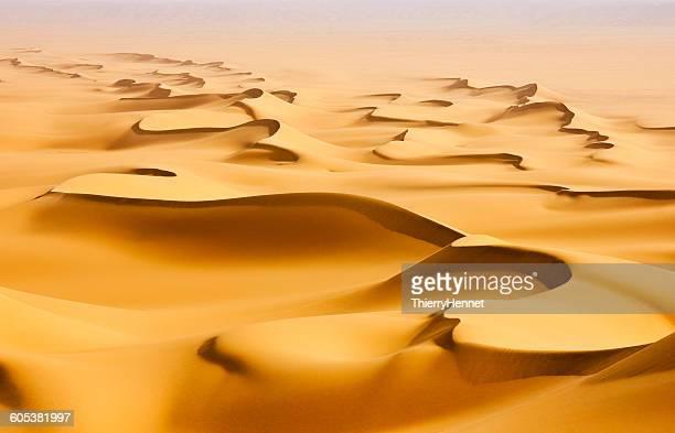 Sand dunes in the Sahara desert at sunrise, Egypt