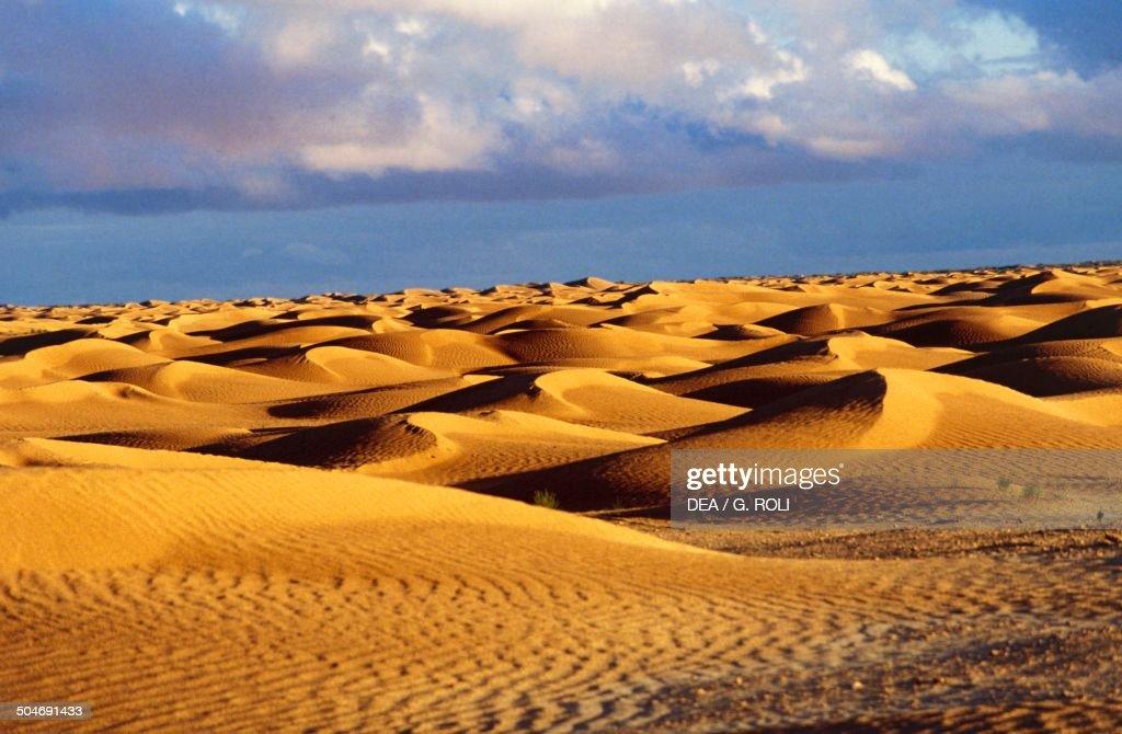 Sand dunes near Douz Grand Erg Oriental Sahara Desert Tunisia