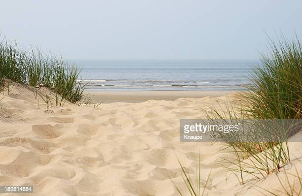 Sand dunes on beach at north sea