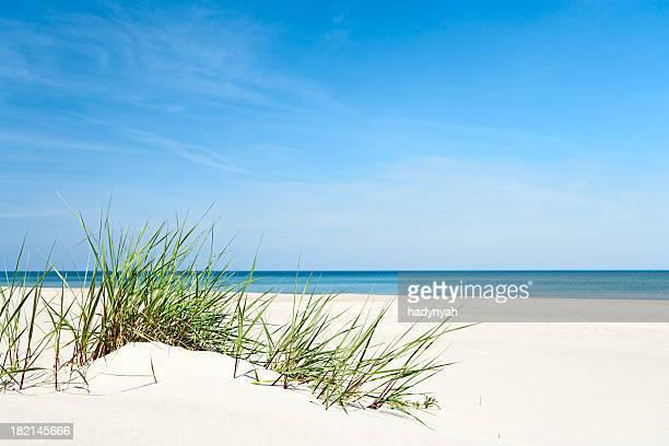 Dune di sabbia