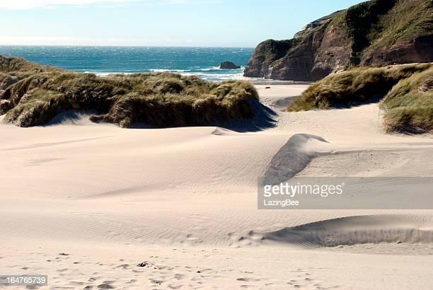 Sand Dunes, Wharariki Beach, Golden Bay, New Zealand