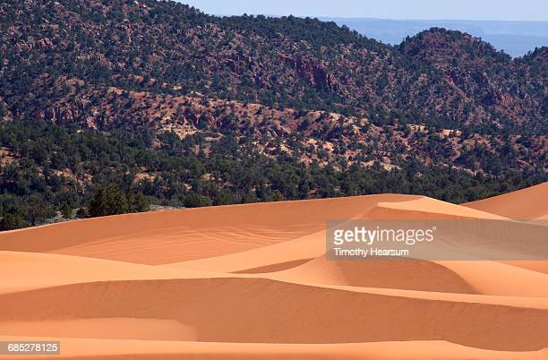 Sand dunes with mountains and sky beyond