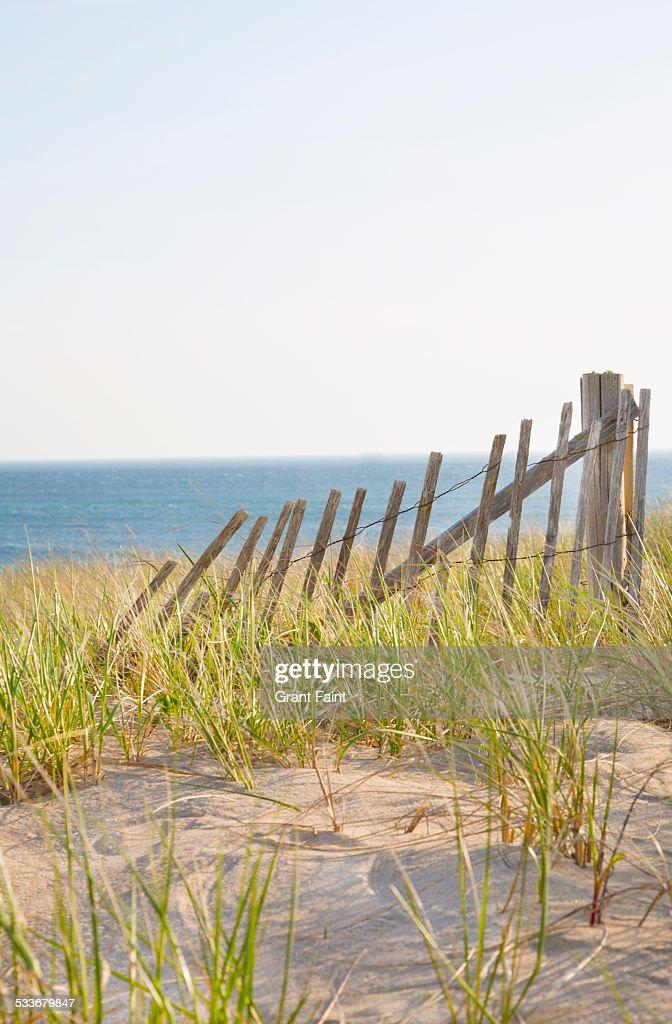 Sand fence at beach