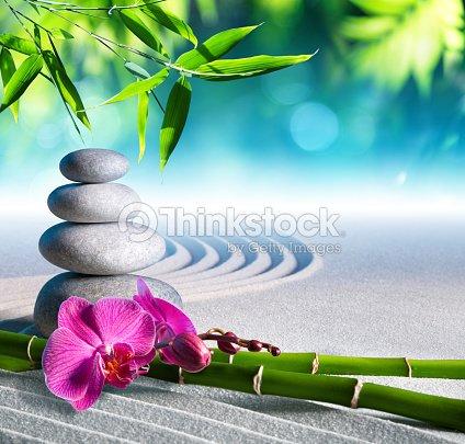 Arena y piedras orqu dea y masajes en el jard n zen foto - Arena jardin zen ...
