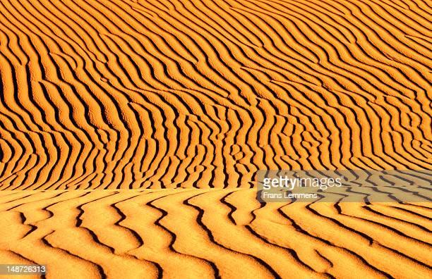 Sand patterns, Sahara Desert.